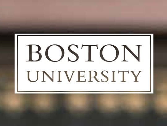 Boston University Online Brochure